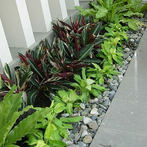 Being Creative With Dull Or Patchy Areas In Your Thai Garden