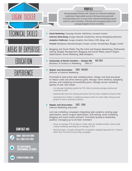 High Quality Custom Resume Cv Templates Resume Cv Resume Web Designer Resume