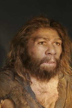 Recent Sightings of Neanderthals   Anthropology and Human evolution