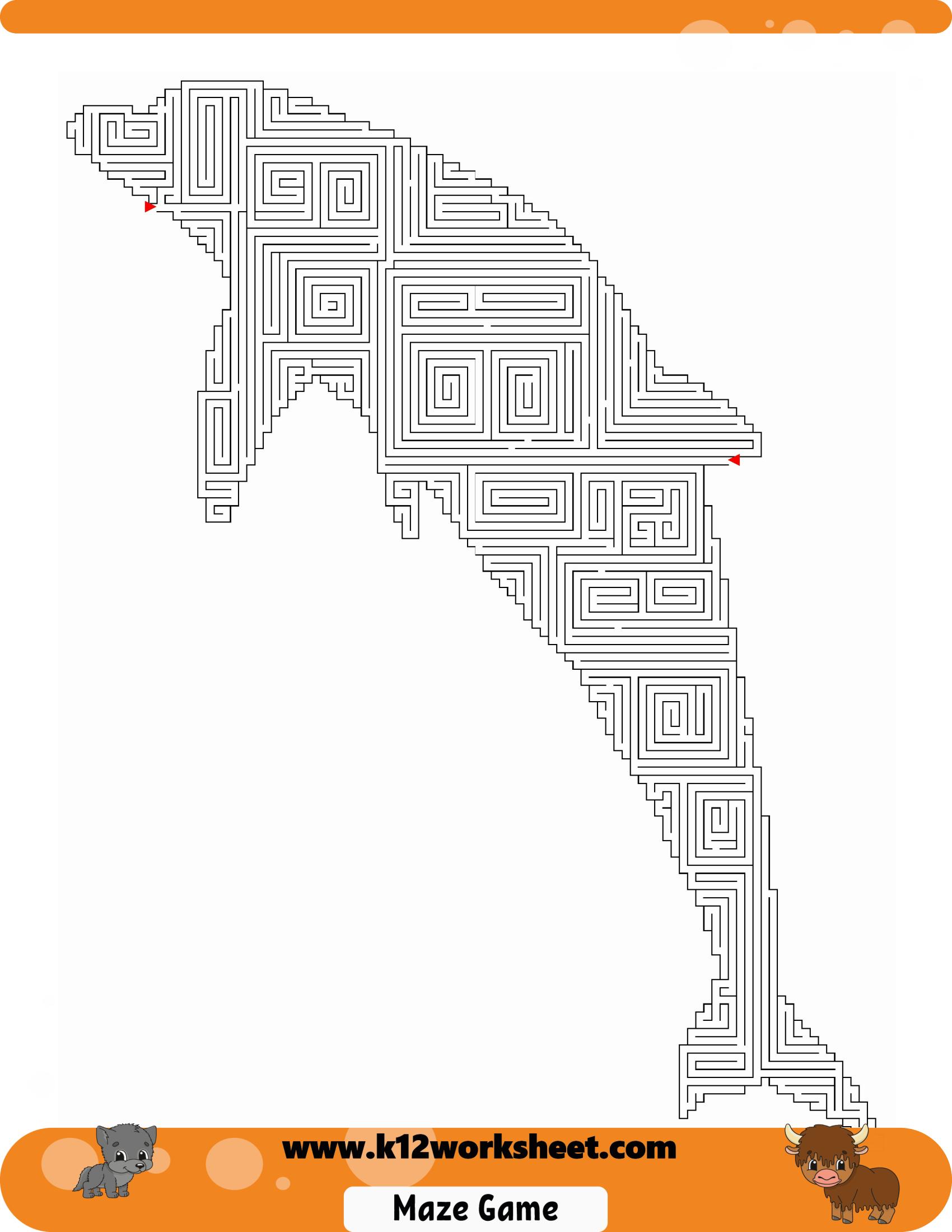 Dolphin Maze Worksheet