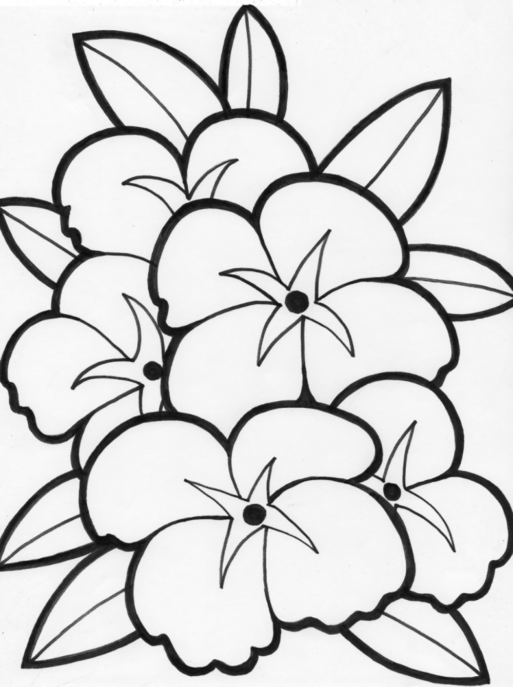 Beautiful Flower  flowers coloring pages  Pinterest  Kids net
