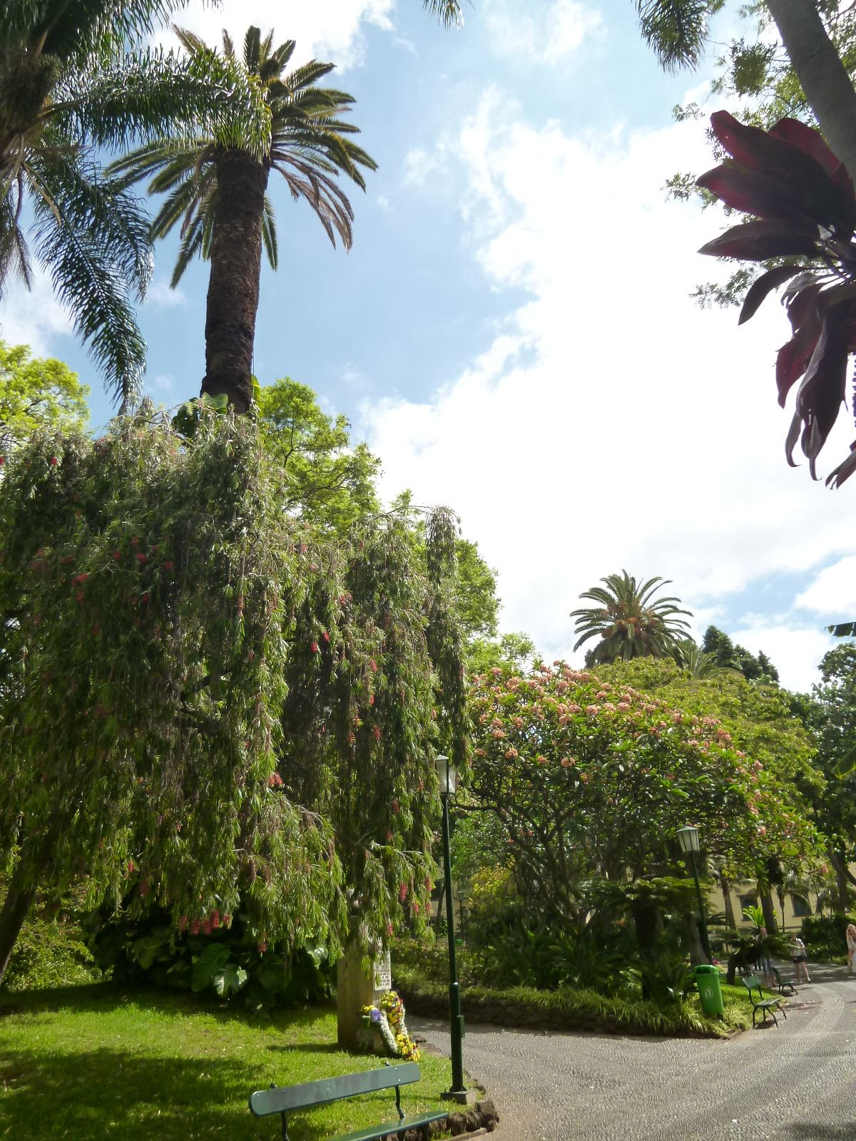Jardim de Sao Francisco, Funchal Madeira Portugal (Luglio)