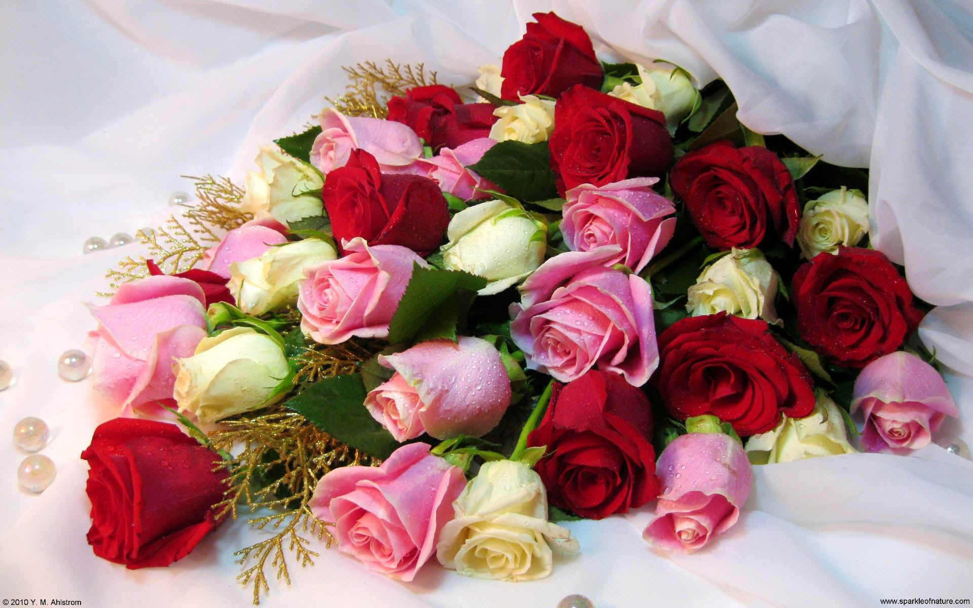 Images of rose bouquets google search flowers pinterest rose images of rose bouquets google search izmirmasajfo