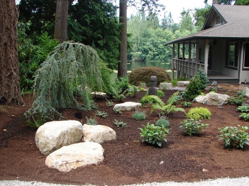 No grass landscaping ideas dead grass no problem grass - No grass backyard ideas ...