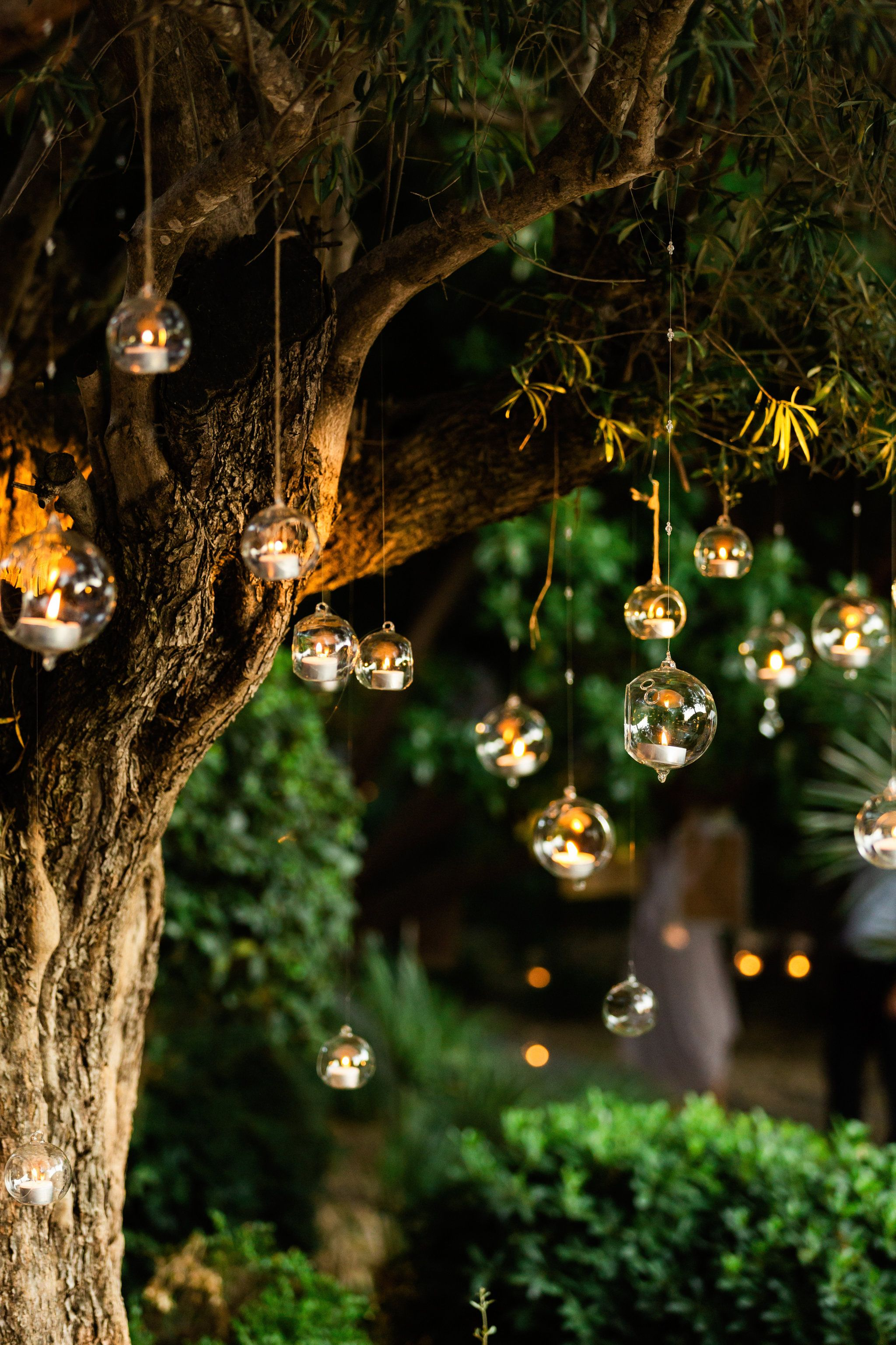 Pin By C C On Ae Lights It S Never Too Much Christmas Lights Wallpaper Beautiful Flowers Wallpapers Photography Wallpaper