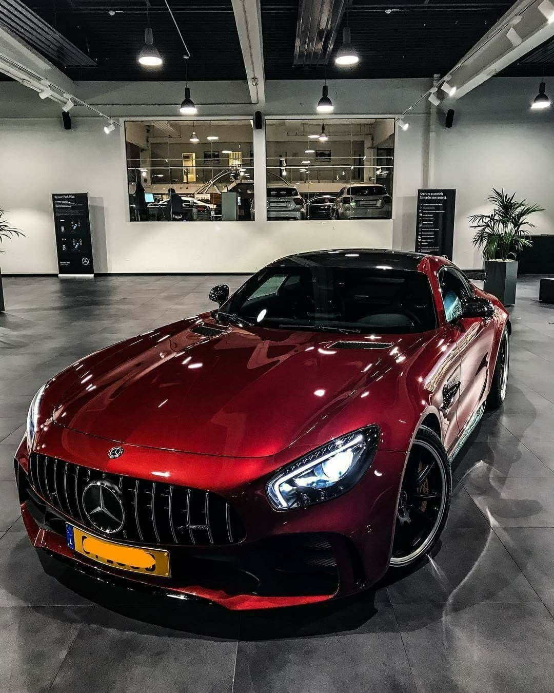 Luxury Cars, Mercedes Benz Cars