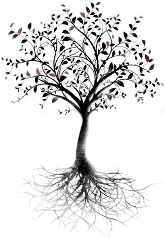 I Want A Tree On My Arm That Goes Up Onto My Shoulder And Has Roots That Goes Down To My Wrist Olive Tree Tattoos Tree Roots Tattoo Roots Tattoo