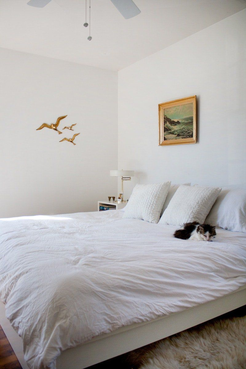 How To Clean Your Mattress Clean bedroom, Dust mites