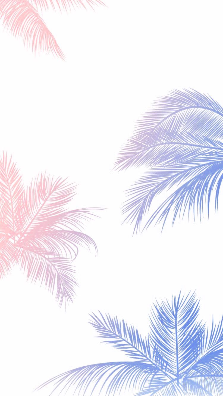 Palm Tree Iphone Wallpaper Iphone Wallpaper Serenity Rose Quartz Pantone 2016