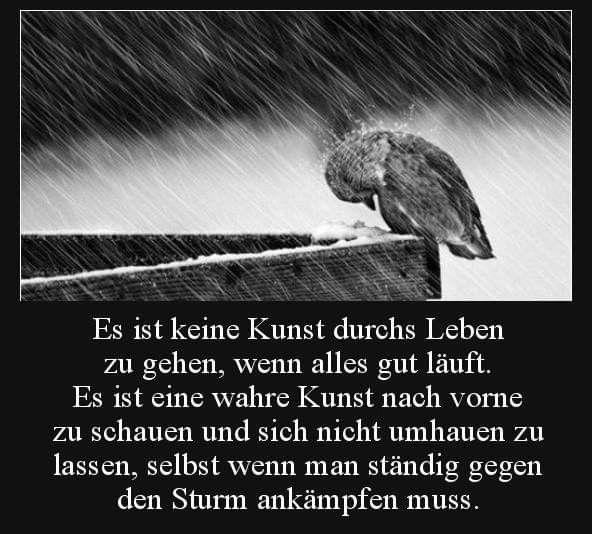 Zitate Mein Kampf
