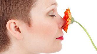 de mauvaises odeurs dans la maison voici 10 trucs pour enlever et diminuer les mauvaises odeurs dans la maison dcouvrez comment diminuer les drles - Comment Enlever Les Mauvaises Odeurs Dans Une Maison