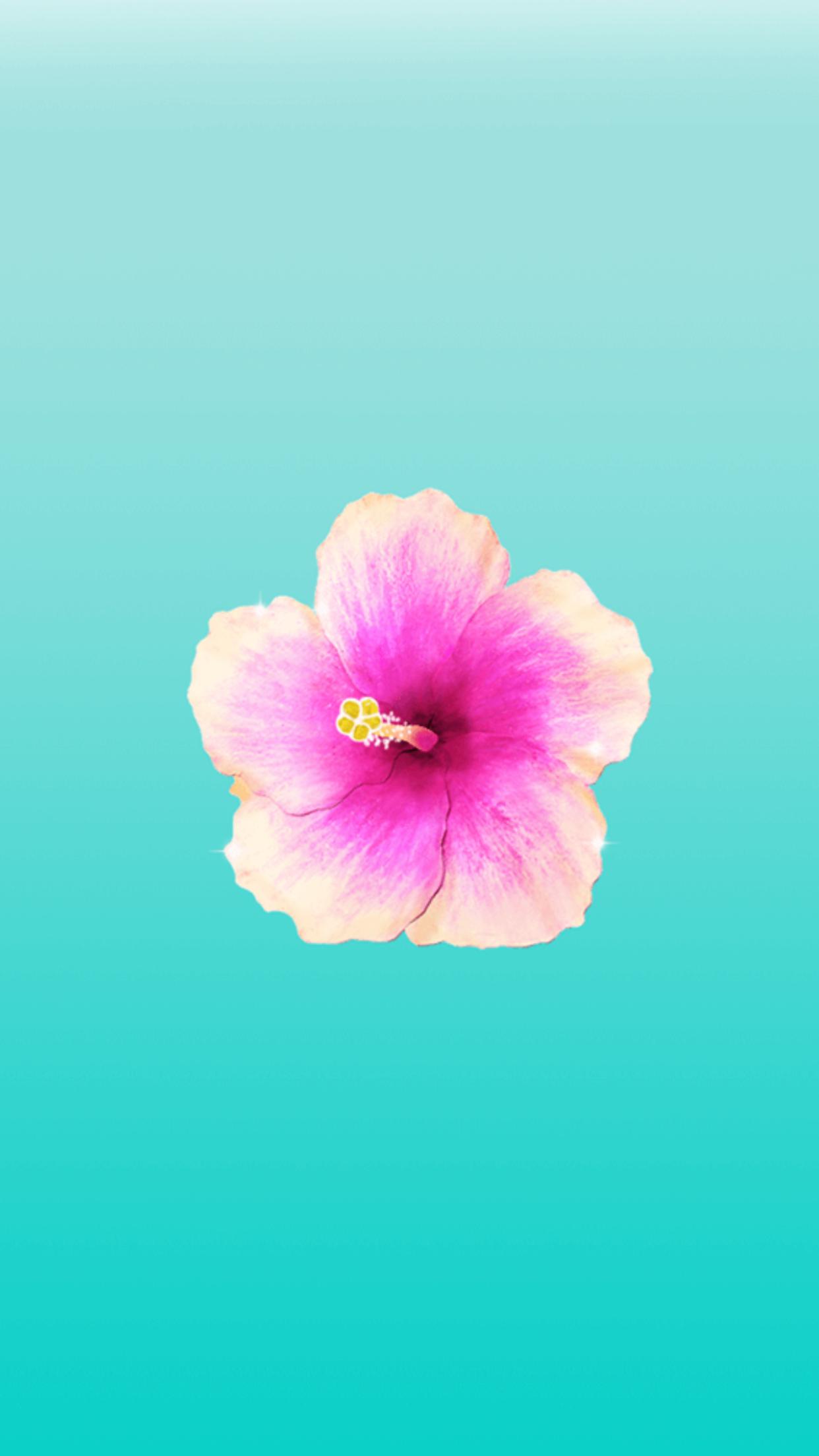 mint background pink flower iphone wallpaper pinterest