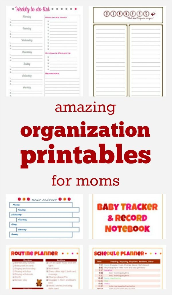 Organization Printables Pinterest Worksheets, Organizing and