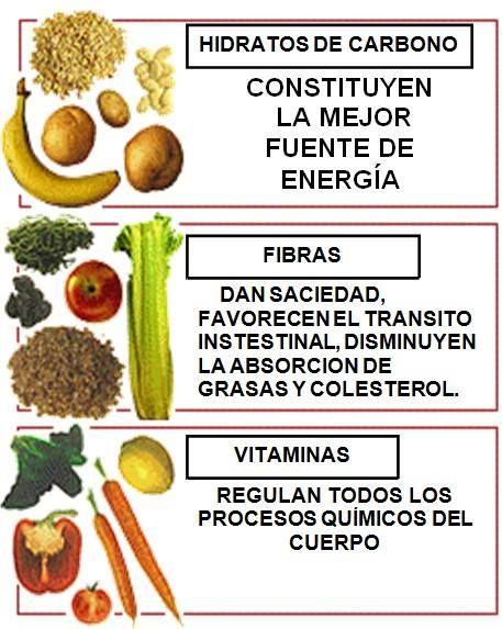 Hidratos de Carbono, Fibras, Vitaminas...