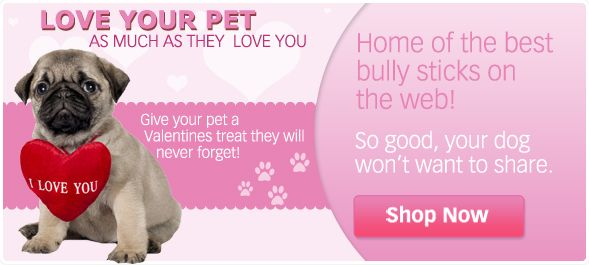 Love on your pet today!!