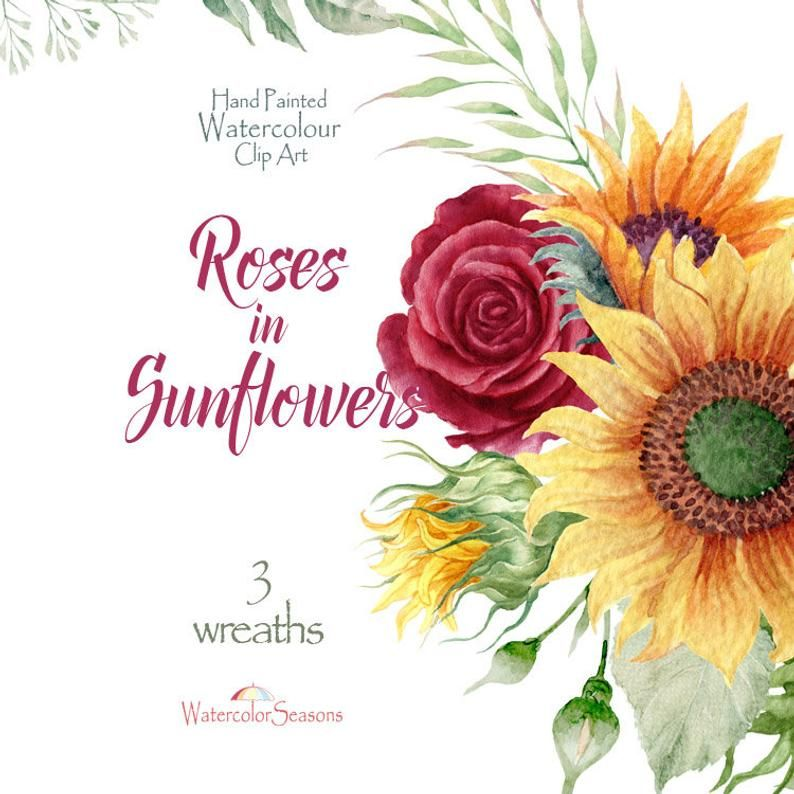 Roses in Sunflowers Watercolor Wreaths - Autumn clipart ...