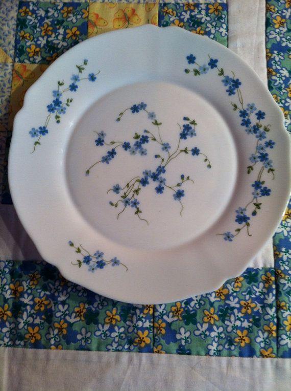 Vintage Arcopal Dinner Plate Dainty Blue Floral Veronica Made in France & Vintage Arcopal Dinner Plate Dainty Blue Floral Veronica Made in ...