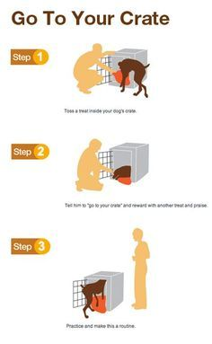 Go to Your Crate
