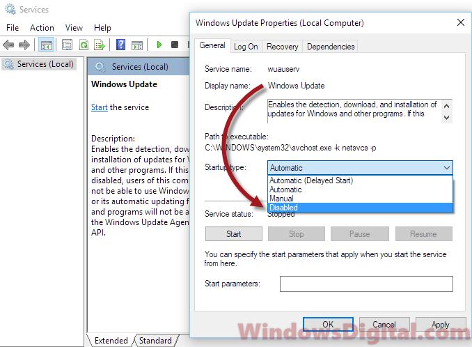 netsvcs disk usage windows 10
