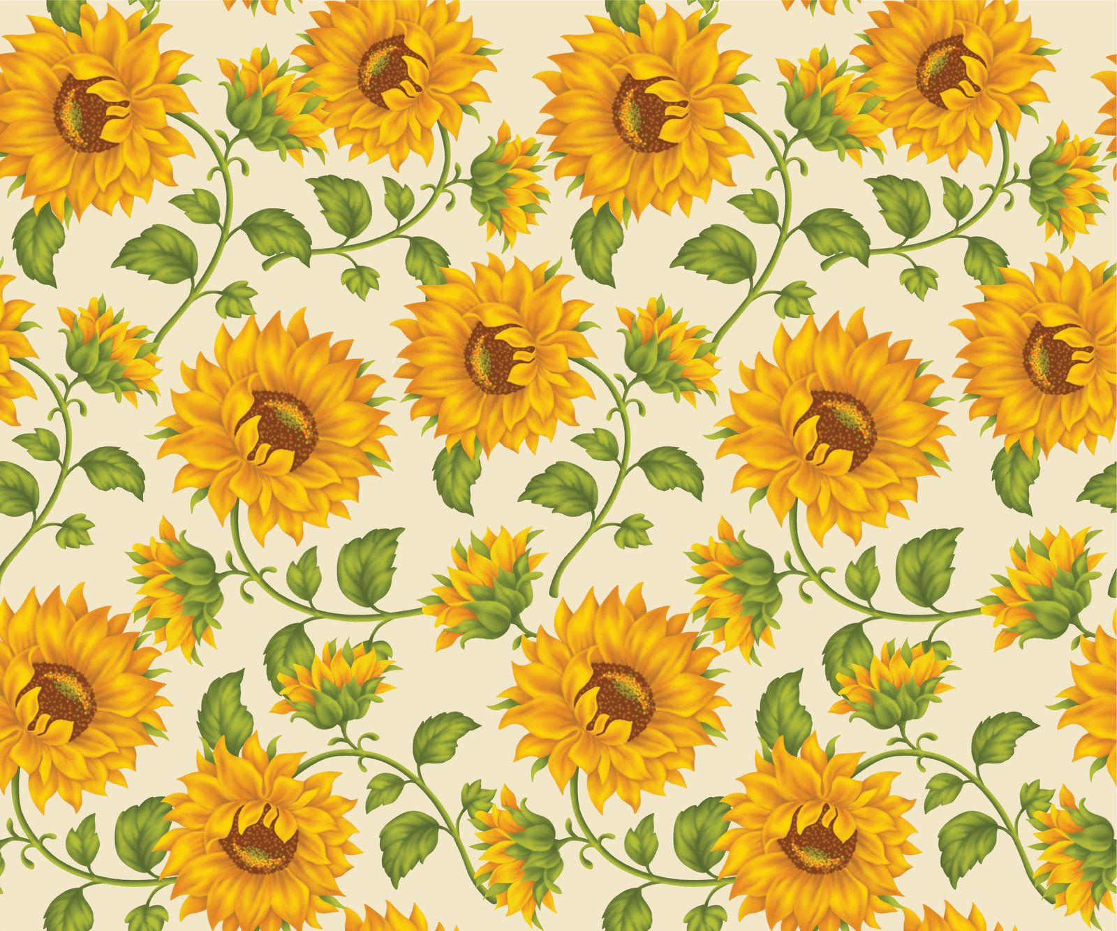 Sunflower Print In Ivory Background by DonCabanza on
