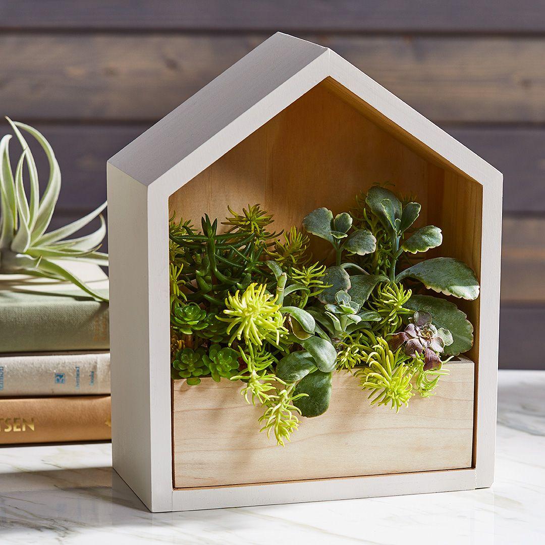 Planter Dans Une Caisse En Bois shadow box wall planter | diy wall planter, diy shadow box
