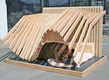 Newschool Of Architecture Design Students Won Top Prize For Their Pedigree Pergola Doghouse Total Marketing Pa Dog Houses Dog House Diy Modern Dog Houses