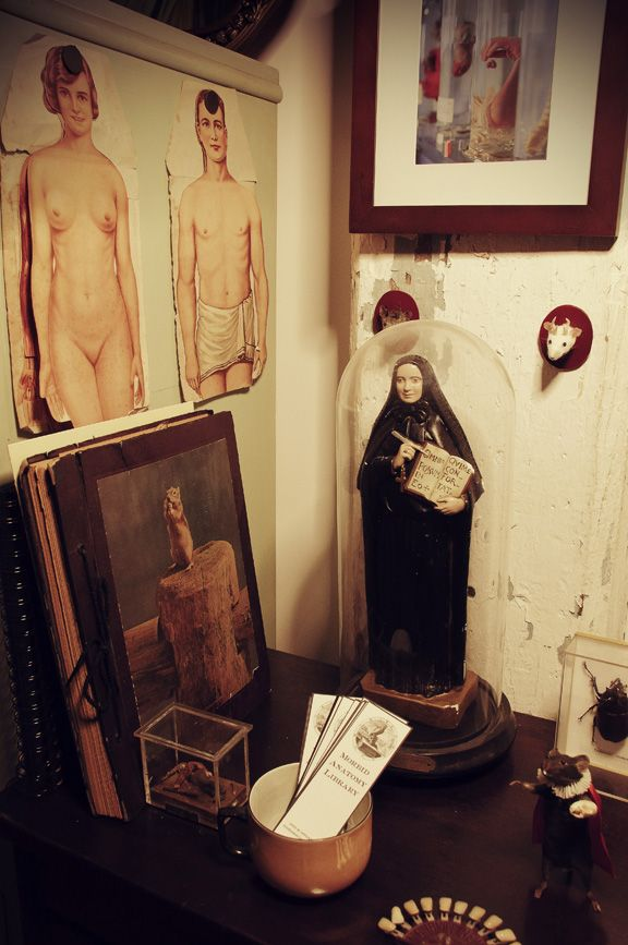 morbid anatomy library + blog: surveying the interstices of art and ...