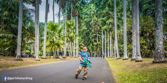 Kebun Raya Bogor Piknik