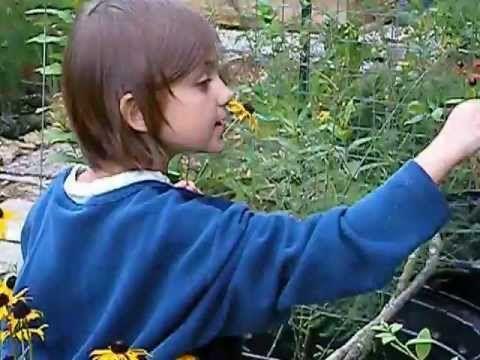 4 Pines Fun--picking flowers