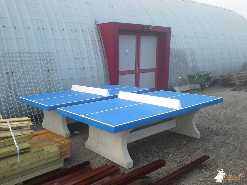 Pingpongtafel Blauw bij Vredenburch College in Monster