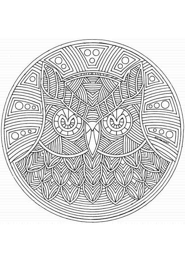 Kleurplaat uil. | Owl coloring pages/ uil kleurplaten | Pinterest