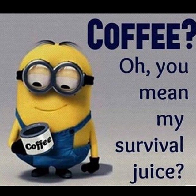 Minion Quotes About Vacation  QuotesGram   All Things Coffee     Minion Quotes About Vacation  QuotesGram