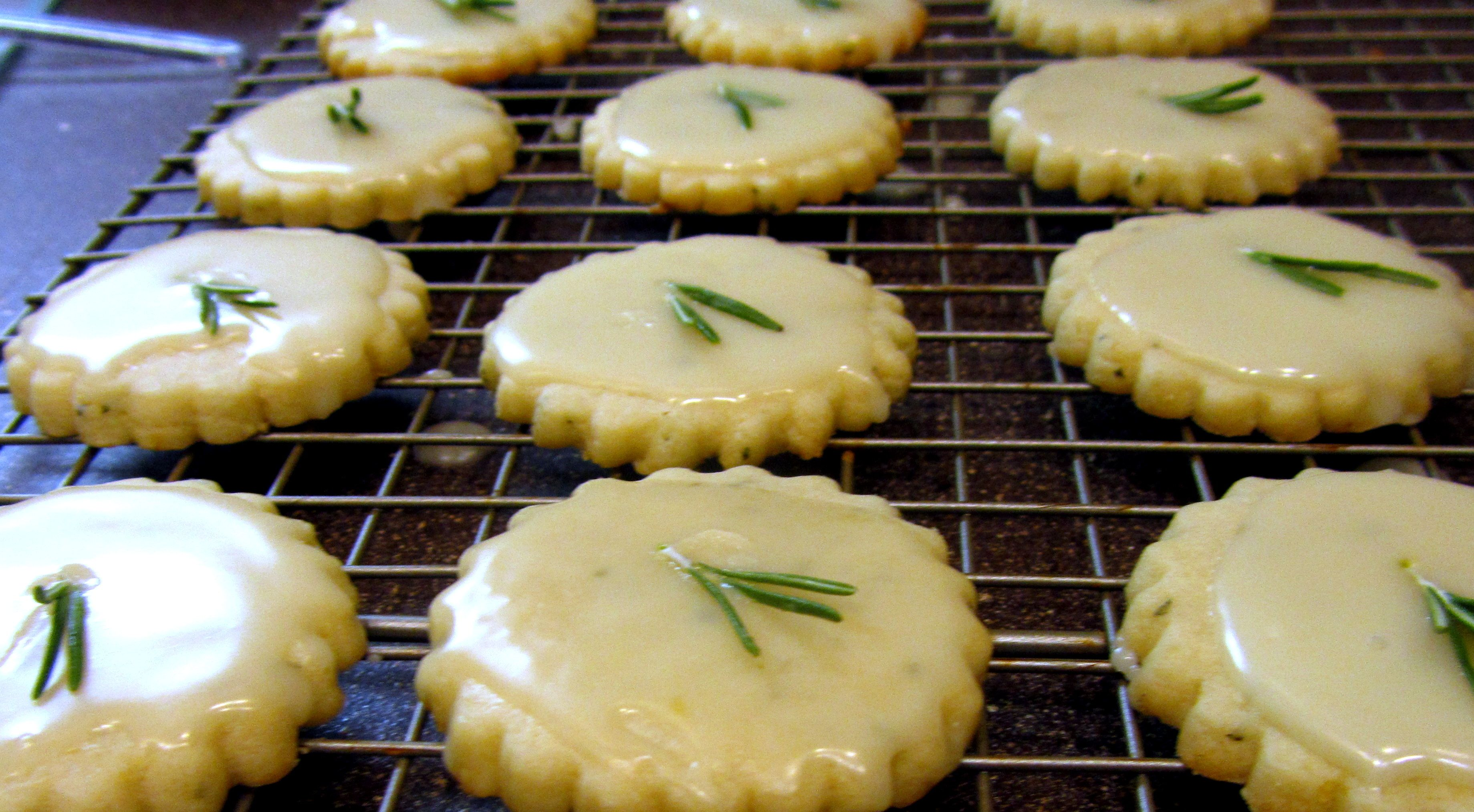 lemon rosemary cookies with olive oil glaze