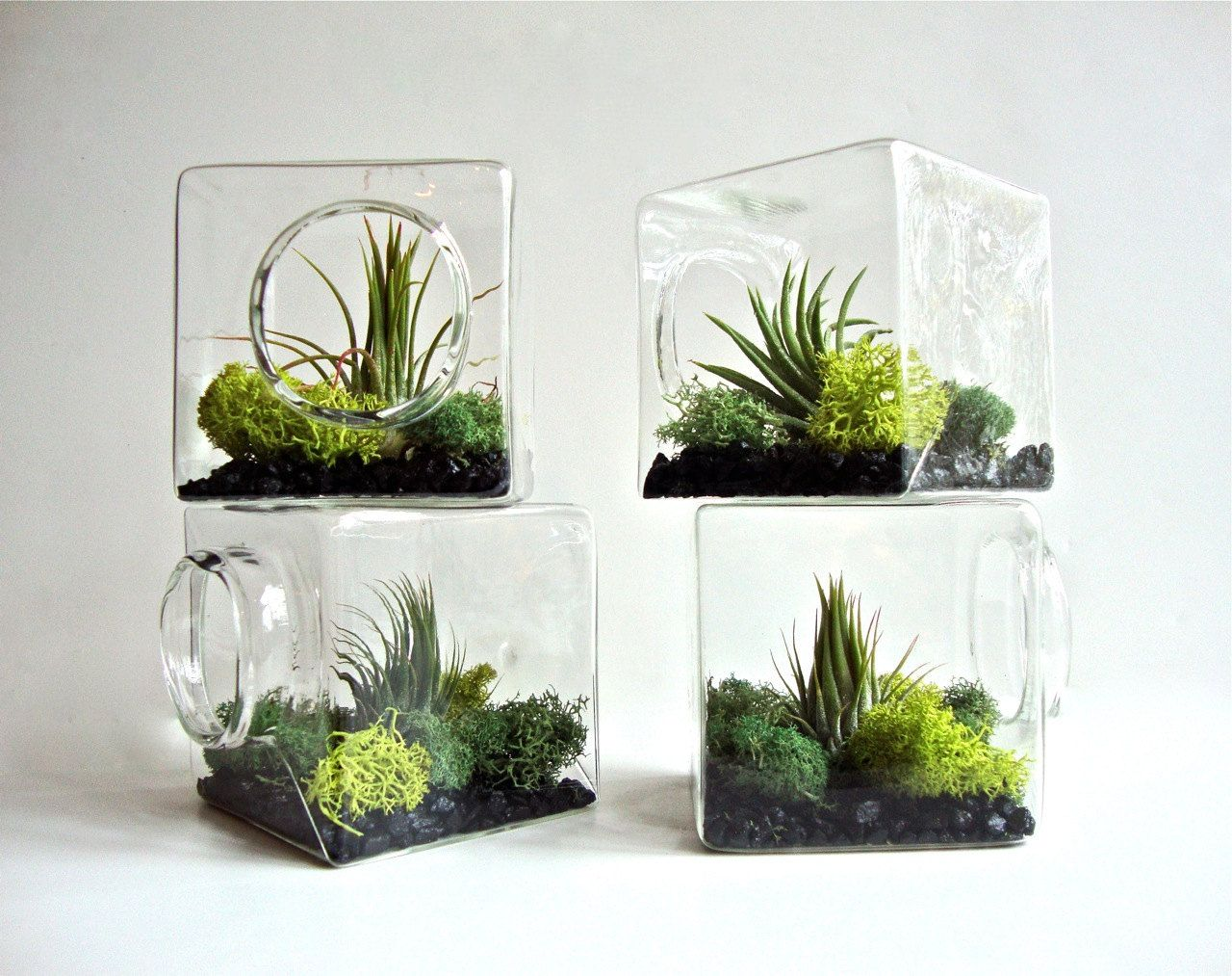 Stackable living eco cube modern air plant von for Dekoration von wohnungen