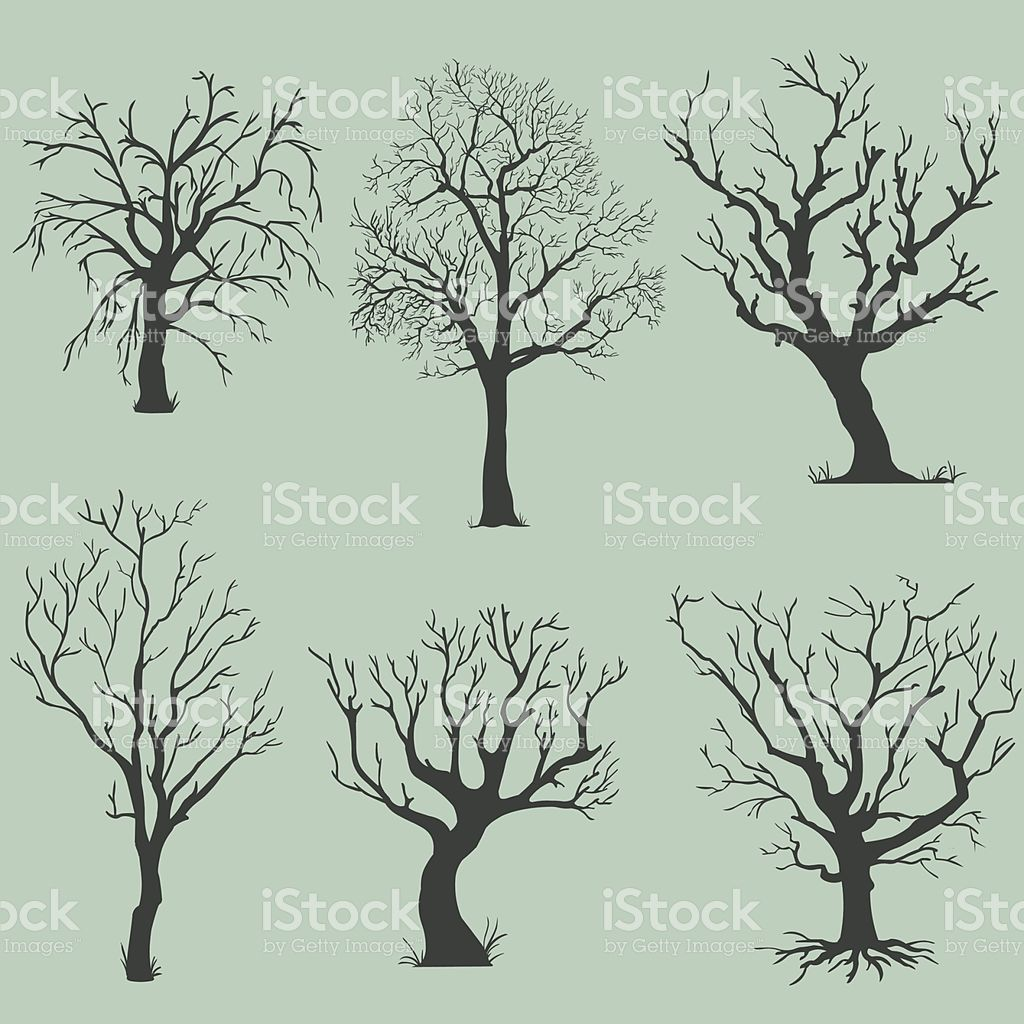 Bare Christmas Tree Clipart.Vector Set Of Silhouettes Bare Trees Wire Twist Trees And