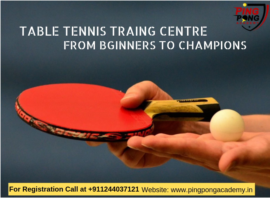 Ping Pong Academy Is One Of The Most Popular Dedicated And
