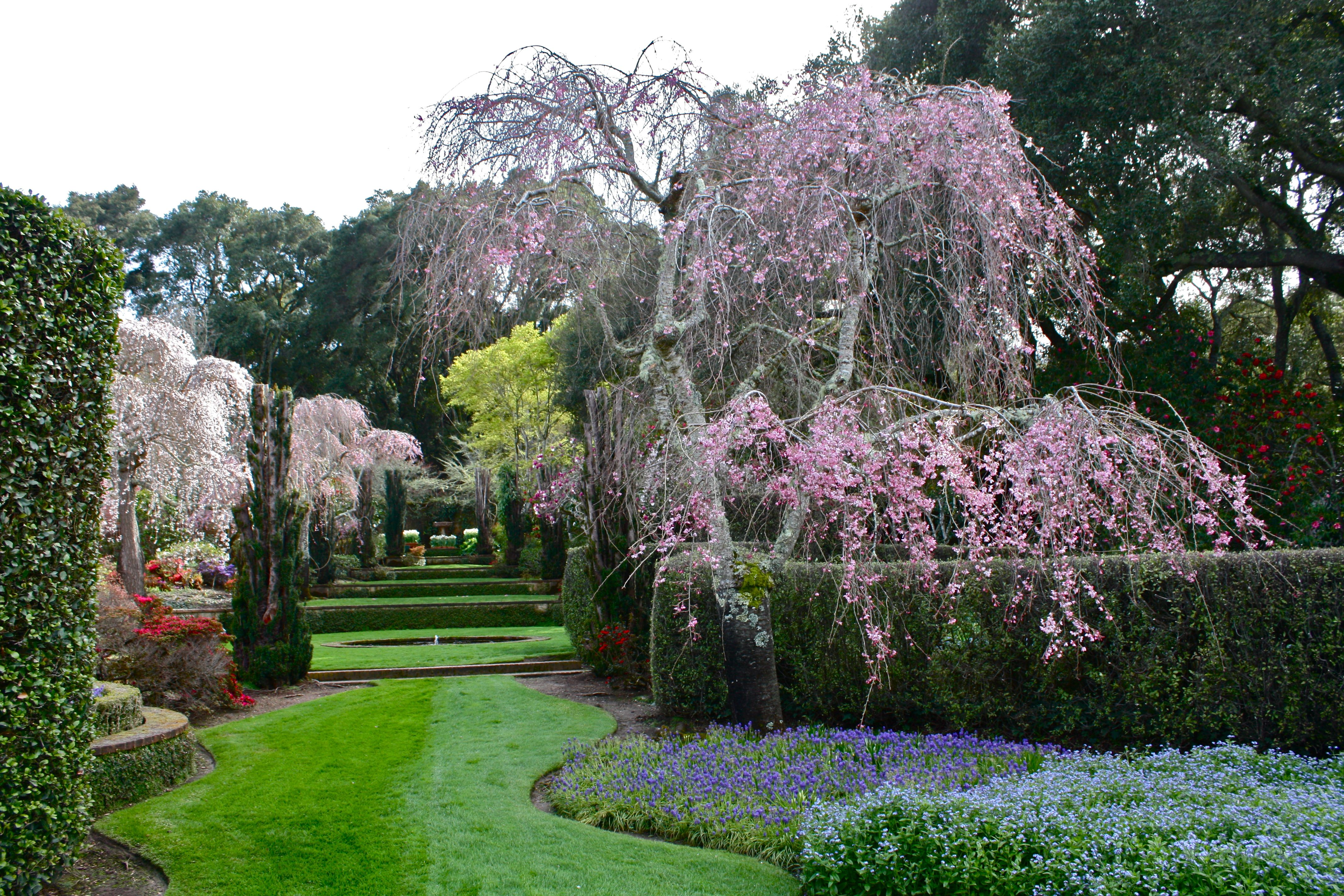 Filoli Gardens Woodside California Anthropogen