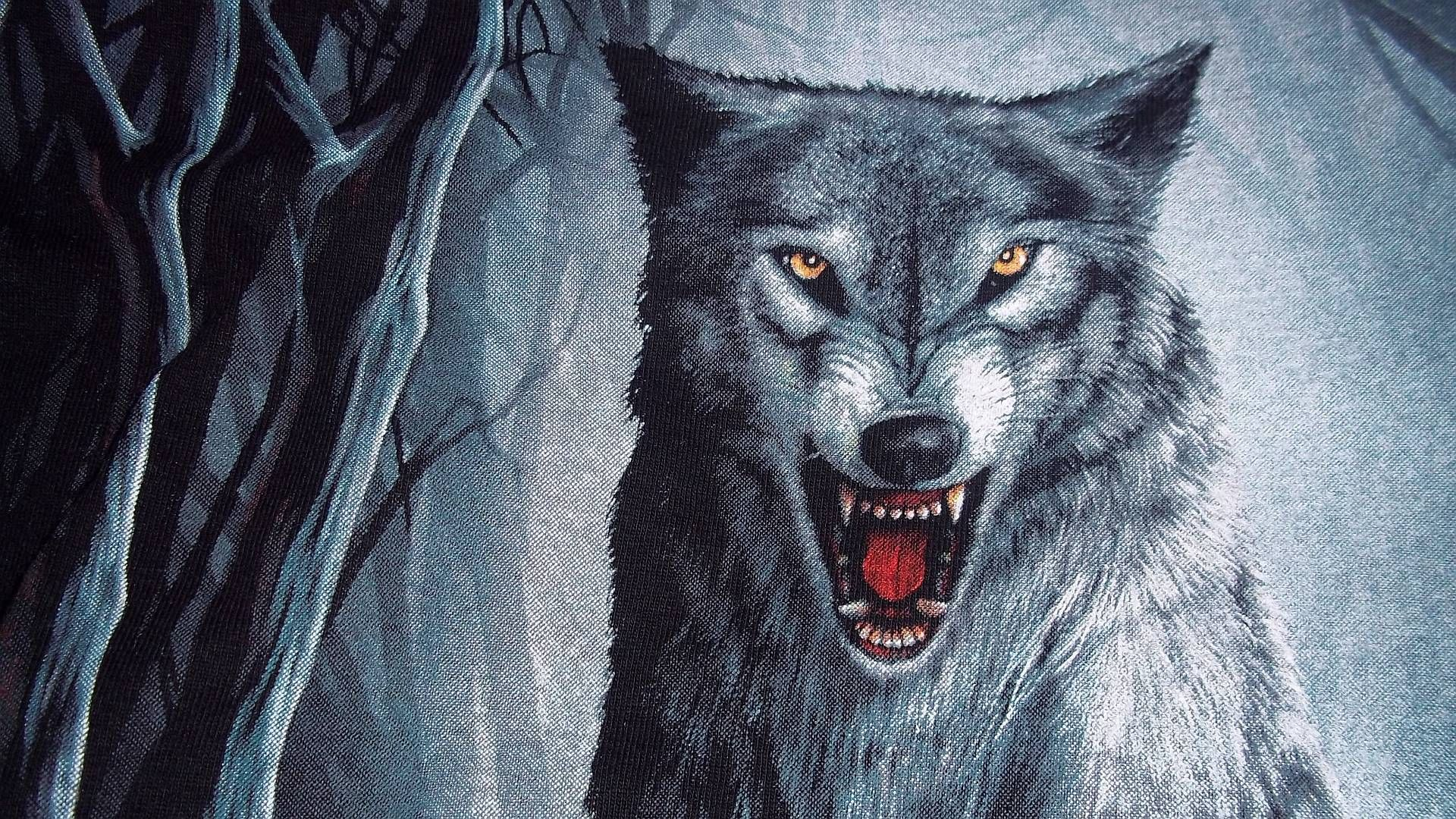 wolf wallpaper free download  Wolf Wallpaper Collection For Free Download | HD Wallpapers ...
