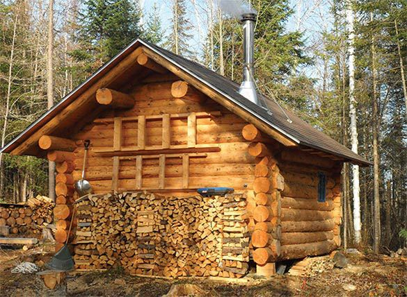 Delicieux Pics Of Log Cabins In The Woods   Google Search