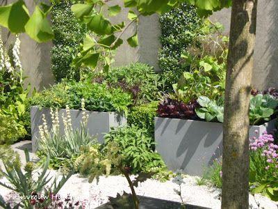 Tuindesign tips en tuinideeën voor een kleine tuin met foto s