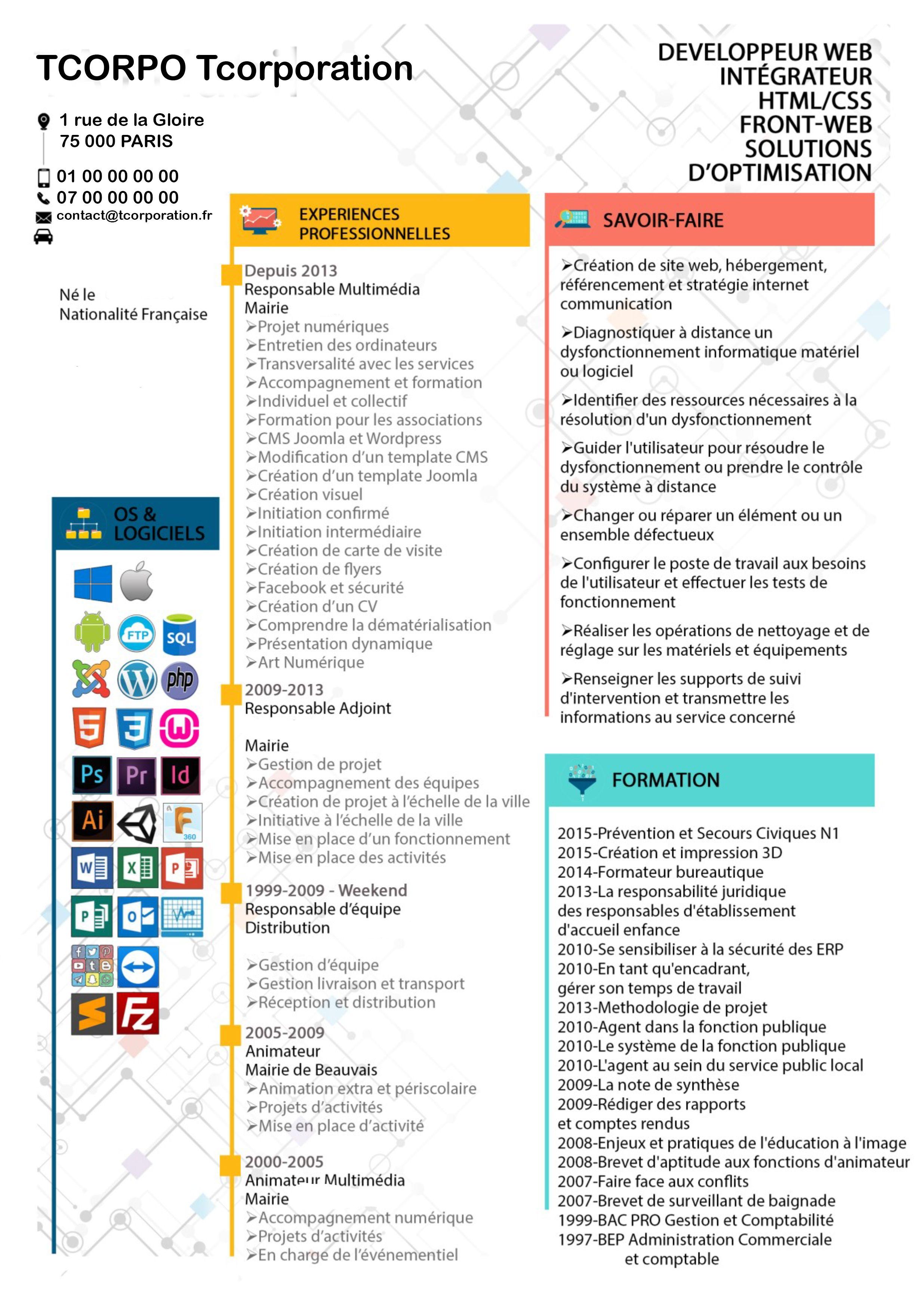 Cv Professionnel Modele De Cv Moderne A Telecharger Modele Cv Cv Professionnel Exemple De Cv Professionnel