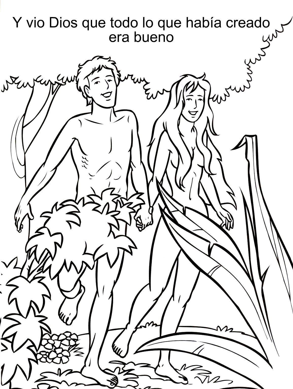 Coloriages: La Création, Adam et Eve