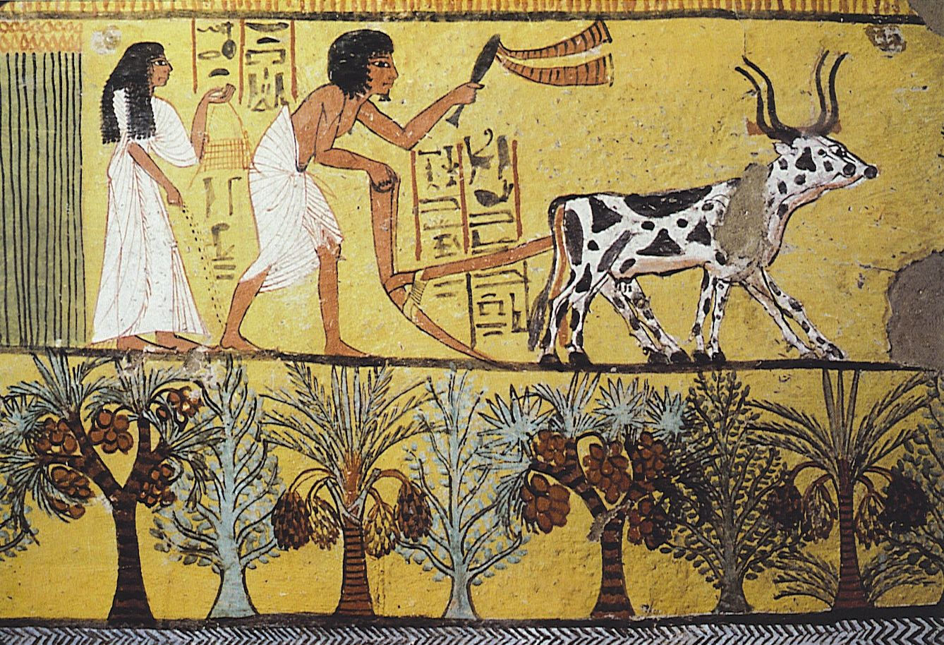 Sennedjem and His Wife in the Fields, Dynasty 19. Sennedjem lived in ...