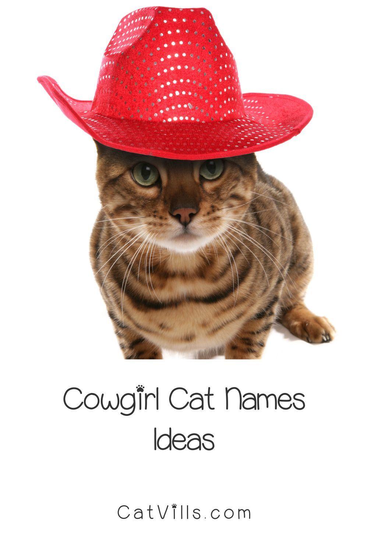 50 Cute Cowgirl & Cowboy Cat Names   CatVills   Cat names, Cats ...