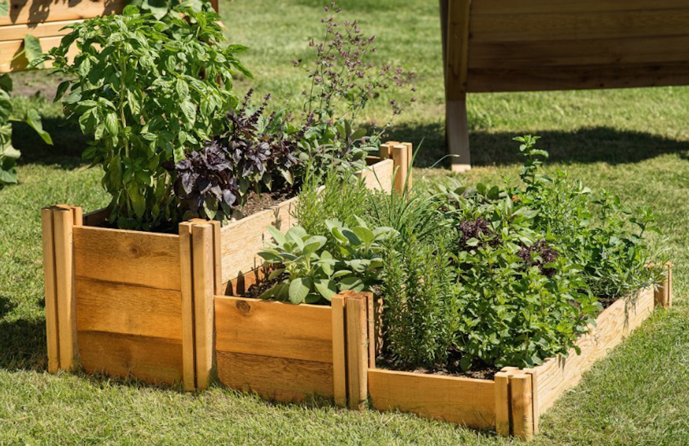 MultiLevel Rustic Raised Garden Bed Elevated garden