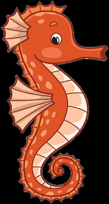 Seahorse clipart. Free download. Creazilla in 2020