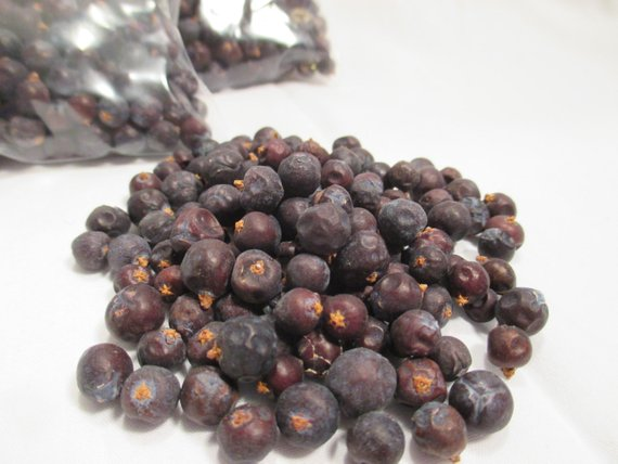 Juniper Berry, Blue Organic - Herb, Protection, Health, Love