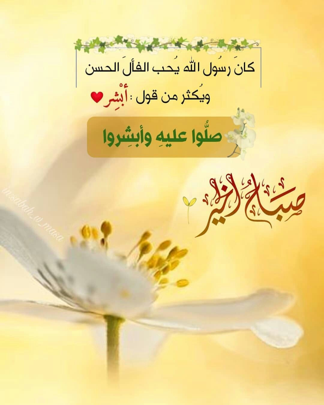 Pin By Laila Alich On صباحيات Beautiful Morning Messages Good Morning Arabic Good Morning Wishes