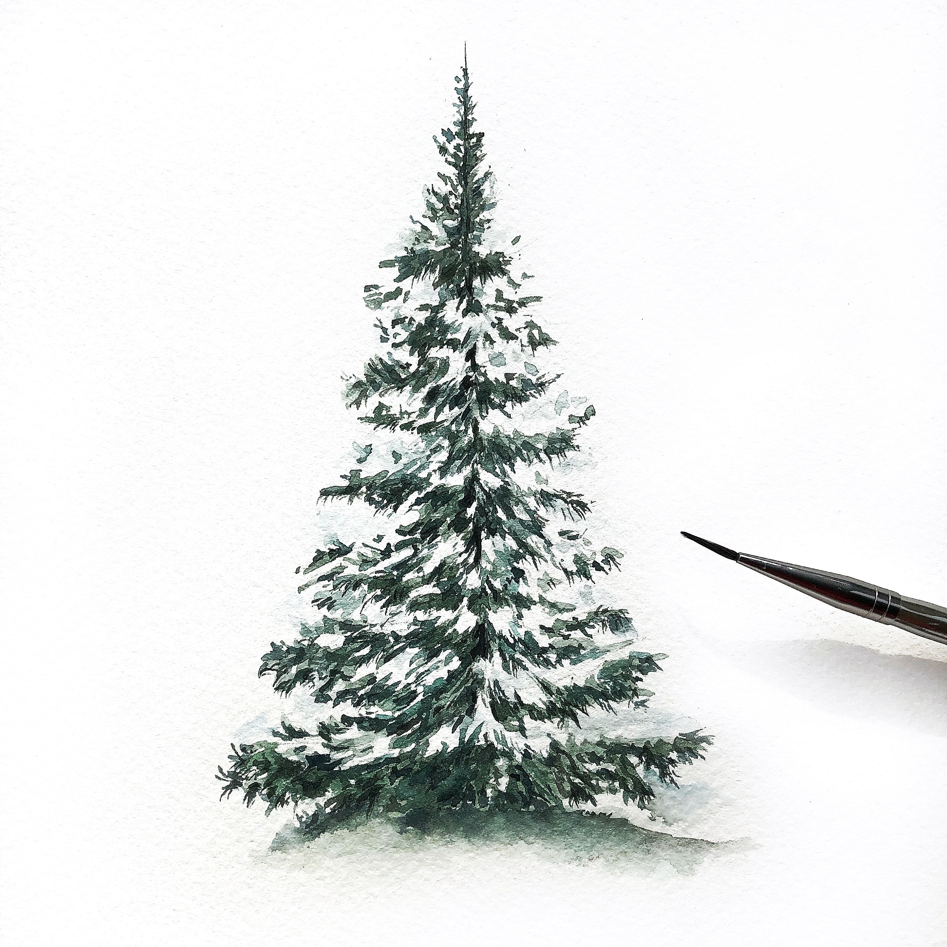 Painting A Snow Covered Pine Tree Using Watercolours The Snow Is