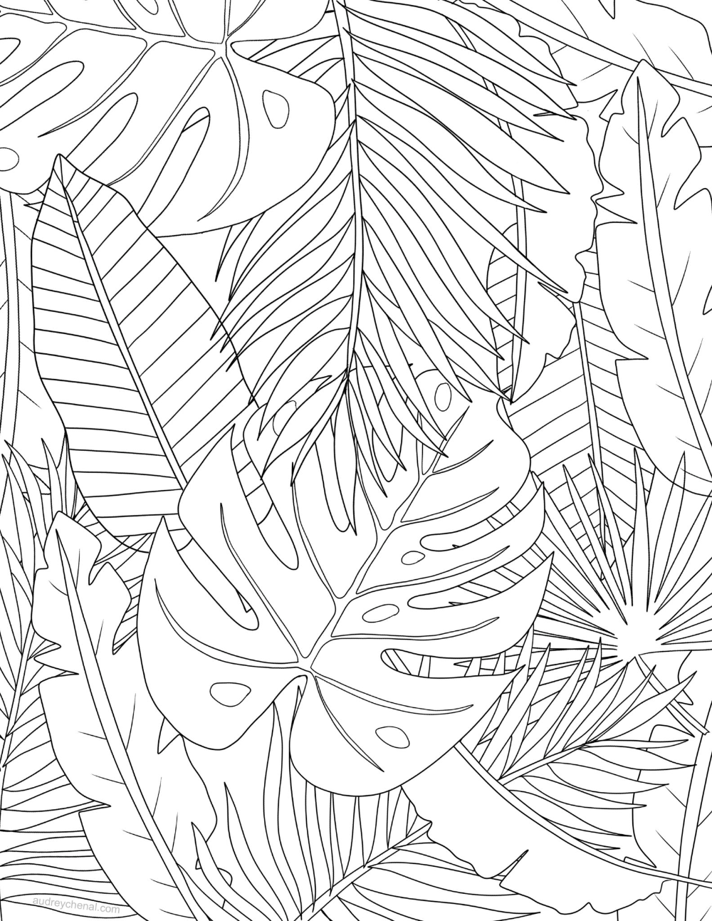 Tropical Leaves Coloring Page Audrey Chenal Tropical Painting Leaf Coloring Page Line Art Drawings